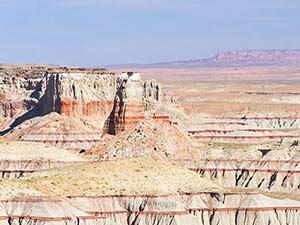 Navajo (Tuba City)